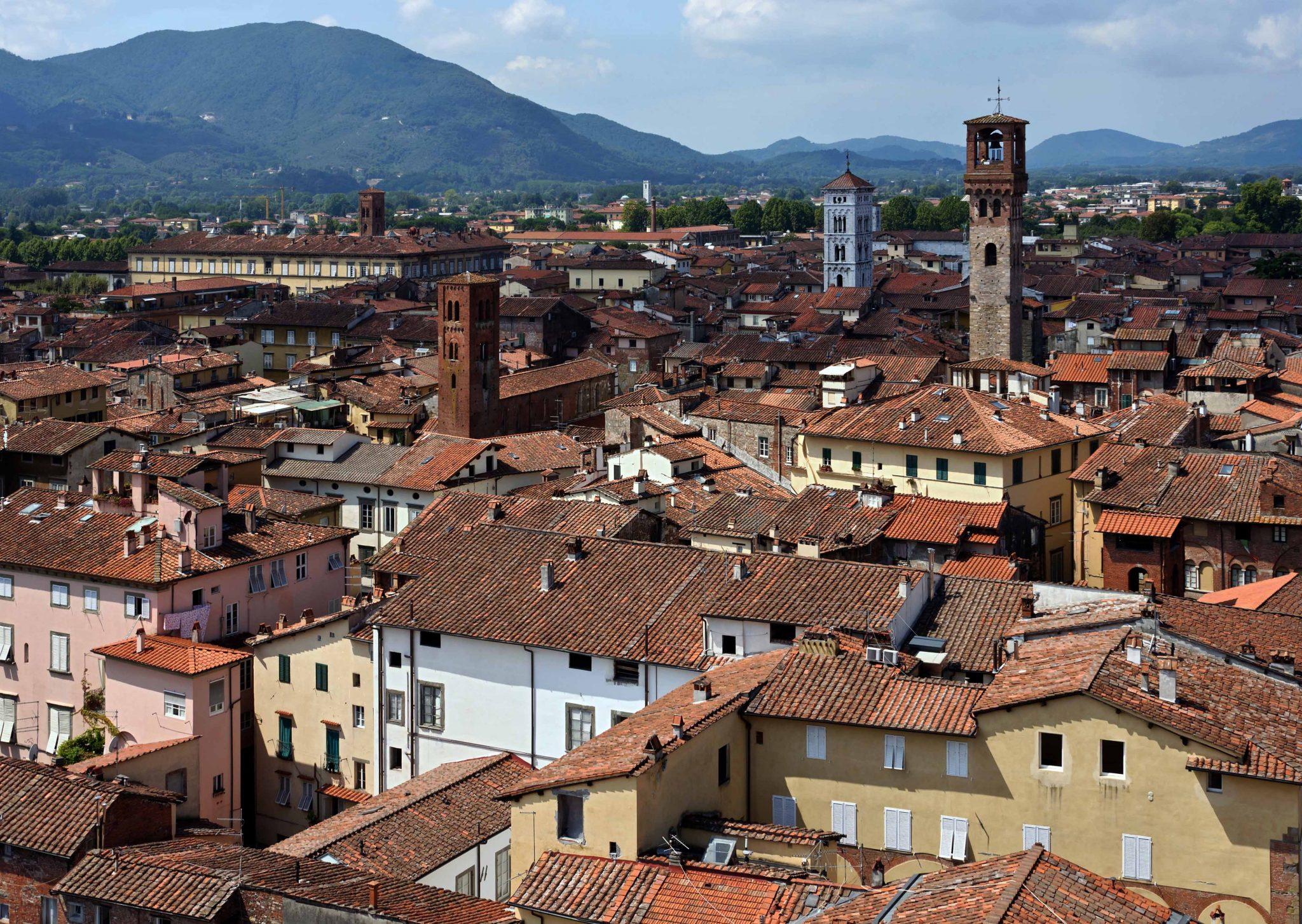Lucques (Lucca), Italie : vue depuis la tour Guinigi
